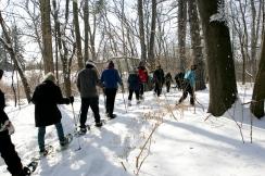 (Sunday February 9th 2014 - Heritage Park, Farmington Hills MI - Nature Center) Outdoor enthusiats enjoy a trek through the snow at Heritage Park Sunday. Photo by: Brian B. Sevald